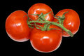 Red tomatoes on white ripe background is insulated Stock Photos
