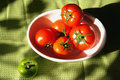 Red tomatos in the bowl Royalty Free Stock Photo