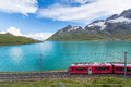 Red train in the high mountains of the Swiss Alps passes near a Royalty Free Stock Photo
