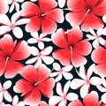 Red tropical hibiscus flower with frangipani seamless pattern Royalty Free Stock Photo