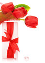 Red tulip bouquet with present Stock Photo