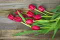 Red tulip bouquet Royalty Free Stock Photo