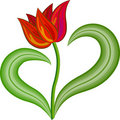 Red tulip flower vector Stock Images