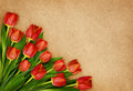 Red tulip flowers bouquet in a corner on craft paper Royalty Free Stock Photo