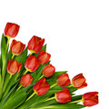 Red tulip flowers bouquet in a corner Royalty Free Stock Photo