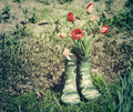 Red tulips in green rubber boots for children in the garden on a sunny spring day. Royalty Free Stock Photo