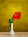 Red tulips in a vase on green background Royalty Free Stock Images