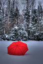 Red umbrella in the canadian snow Stock Image