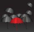 Red umbrella leader