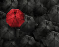Red umbrella with water drop stand out from the crowd of many bl Royalty Free Stock Photo