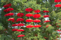 Red umbrellas Royalty Free Stock Photo