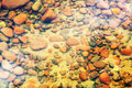 Red Underwater Rock Bed Background Royalty Free Stock Photo