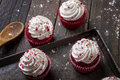 Red velvet cupcakes freshly baked creamy in a baking tray tastefully displayed on rough wooden slats photographed with copy space Stock Images