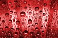 Red water drops Royalty Free Stock Image