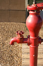Red water spigot faucet in a garden Stock Photos