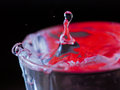 Red water splash in glass on black background Royalty Free Stock Photo