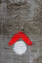 Red and whit hike path symbol painted on tree bark Royalty Free Stock Photo