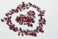 Red and white beans arranged in a heart shape Royalty Free Stock Photos