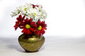 Red and white daisies in a copper vase chrysantemum miniature Stock Image