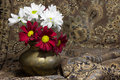 Red and white daisies in a copper vase chrysantemum miniature Stock Photos