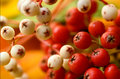 Red and white fall berries Stock Photography