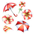 Red and white Petunia flowers and umbrellas set. Watercolor illustration