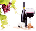Red wine assortment of grapes and cheese bottles glasses isolated on white Royalty Free Stock Images