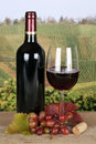 Red wine in a bottle in the vineyards and glass Stock Photos