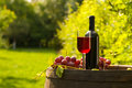 Red wine bottle with wineglass and grapes in vineyard glass of on top of wooden barrel Royalty Free Stock Photography