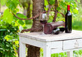 Red wine bottles and glass with in vineyard Stock Images