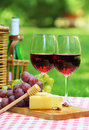 Red wine in the garden Royalty Free Stock Photography