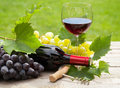 Red wine glass and bottle with bunch of grapes Royalty Free Stock Photo
