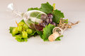 Red wine glass with grapes and vine leaves Royalty Free Stock Photo