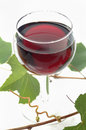 Red wine glass with leafs Stock Images
