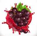 Red wine and grapes. Fresh fruit, vector icon