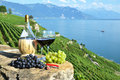 Red wine and grapes lavaux region switzerland Stock Photography