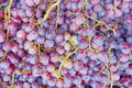 Red wine grapes for sale juicy background Stock Photo