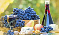 Red wine and red grapes on the table Royalty Free Stock Images