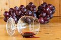 Red wine spilled and glass still life from grapes Royalty Free Stock Photo
