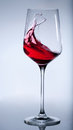 Red wine splashing in the elegant glass. Royalty Free Stock Photos