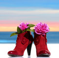 Red woman shoes whit flowers Royalty Free Stock Photo