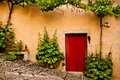 Red Wooden Door Flanked by Green Plants