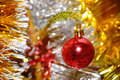 Red xmas ball hanging on pine twig Stock Photography