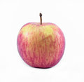 Red yellow apple on a white background front view Royalty Free Stock Images