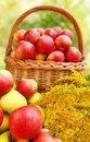 Red and yellow apples in the basket. Royalty Free Stock Photos