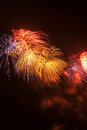 Red, yellow and blue fireworks against a black sky. Royalty Free Stock Photo
