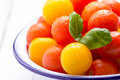 Red and yellow cherry tomatoes in white bowl with basil water drops Stock Image