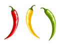 Red, yellow and green hot chili pepper. Vector illustration. Royalty Free Stock Photo
