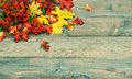 Red and yellow leaves on wooden texture autumn background rustic vintage toned picture Stock Photography