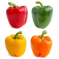 Red yellow orange and green peppers on white background Stock Images